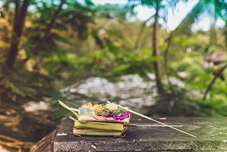 Canggu Villa Merah Bali Canggu Beach Nature